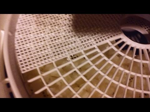 Cheap DIY Food Dehydrator Tray Liners/Screens