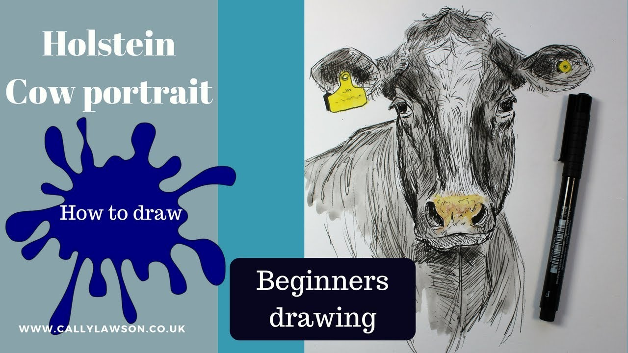 How to draw a cow face, beginners drawing tutorial