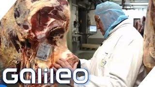 Dry Aged Beef: Das Fleisch für Steakliebhaber | Galileo | ProSieben