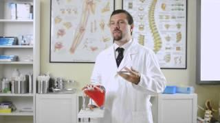 Medici Online - La lussazione dell