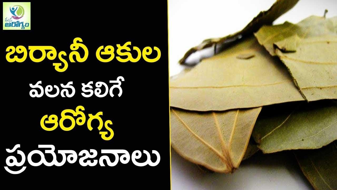 Bay Leaves Benefits And Uses Mana Arogyam Telugu Health Tips Youtube