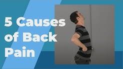 hqdefault - Symptom Lower Back Pain
