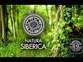 Косметика Natura Siberica в Модном свете ТК Волга Ведущая Марина Теплицкая mp3