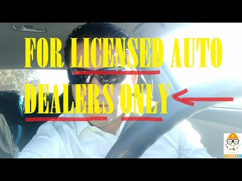 For Licensed Car Dealers ONLY. 18 Years in the Car Business, Auctions, Reviews, Stress