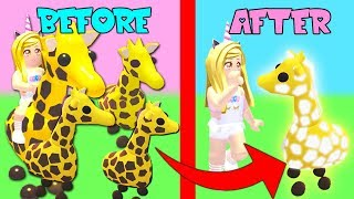 Turning My LEGENDARY Giraffes Into NEON Giraffes In Adopt Me! (Roblox)