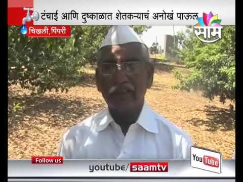 Pimpri-Chinchwad : Half Acres Land Saved For Birds
