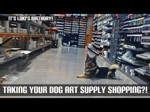 Taking Your Dog Art Supply Shopping?!