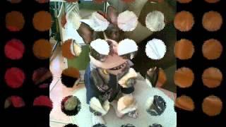 Massendefekt ~ Tote Liebe (Harald R.I.P 06.03.2012).wmv