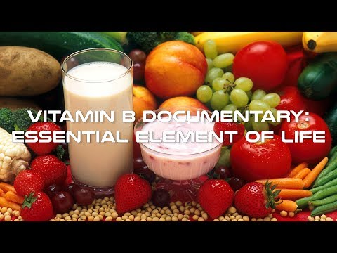 Vitamin B Documentary   Essential Element of Life