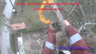 Рязань.  Cпил деревьев удаление пней(http://promalp-r.ru., 2015-09-08T19:02:28.000Z)