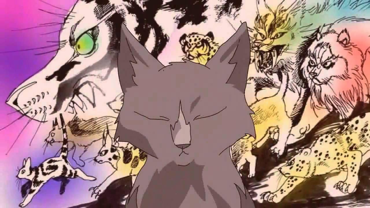 Warrior Cats Film In Die Wildnis Folge  Teil