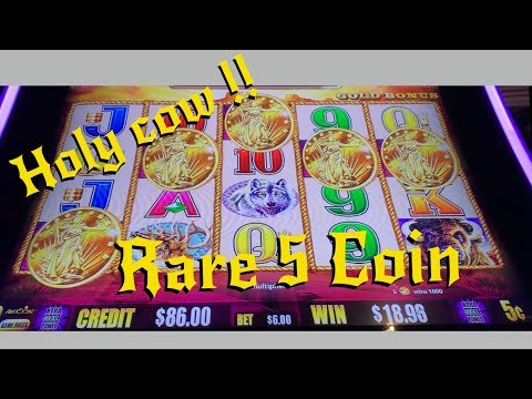 SUPER RARE 5 Coin Bonus on 5c Buffalo Gold !!