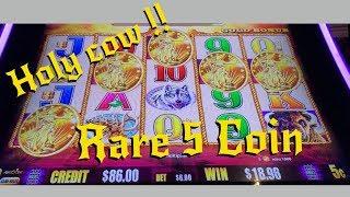 SUPER RARE 5 Coin Bonus on 5c Buffalo Gold !!