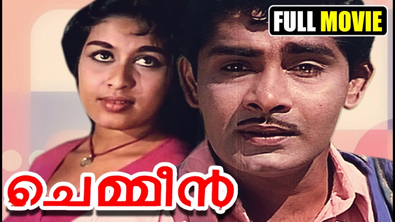 torrent meaning in malayalam