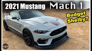 homepage tile video photo for The 2021 Mustang Mach 1 is Either the Best Mustang GT Ever, or a Budget Shelby GT350 - Two Takes