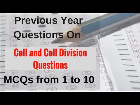 Previous Year Questions On Cell and Cell Division: MCQs from 1 to 10
