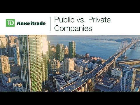 Public vs. Private Companies