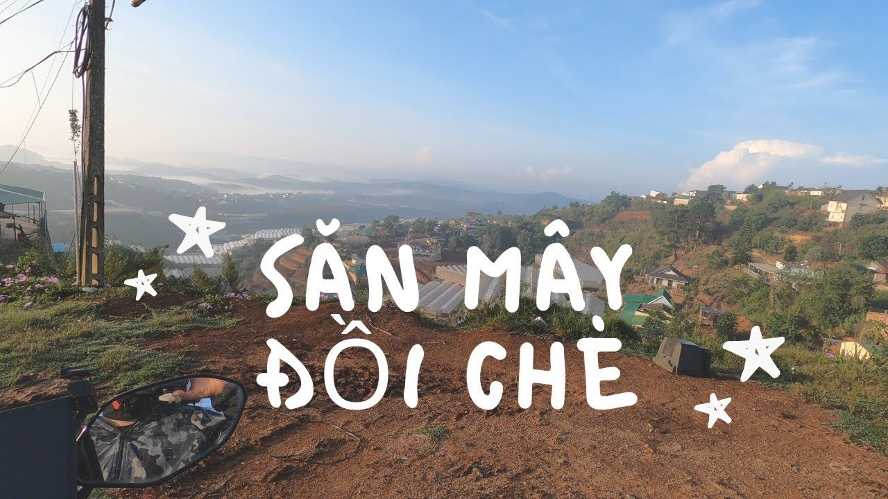 ĐÀ LẠT NHỮNG CHUYẾN ĐI SĂN MÂY ĐỒI CHÈ | Hunting For Cloud in Dalat Tea Farm