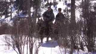 Промысловая охота на соболя (Алтай)(Один день из жизни охотника-промысловика на Алтае., 2015-04-05T20:50:55.000Z)