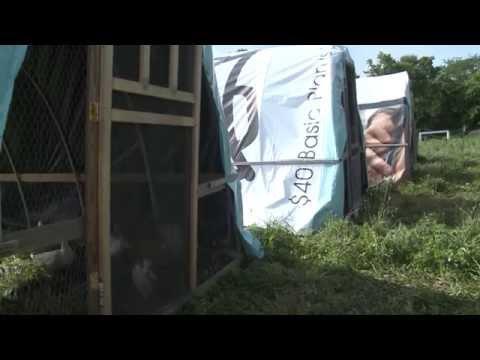 Blue Yonder Organic Farm Tour for Farmer Veterans