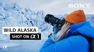 Wild Alaska | Charly Savely | Shot on Sony Alpha 1