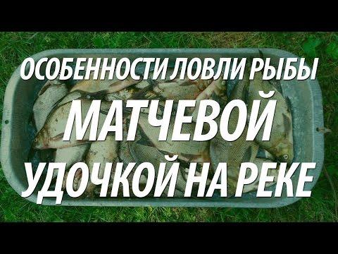 Удачная Матчевая Ловля Подлещика поздней осенью. О Рыбалке Всерьез видео.
