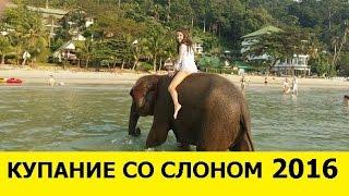 Купание со слоном Остров Ко Чанг Тайланд 2016(В начале видео купание со слоненком, а потом мои воспоминания о Ко Чанге! Приятного просмотра))), 2016-04-01T13:17:53.000Z)