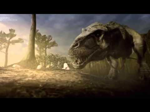 Animals Planet  - Clash Of Dinosaus -  National Geographic  - Discovery Channel HD