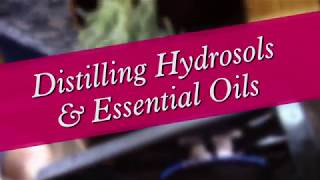 Distilling Hydrosols & Essential Oils