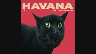 Camila Cabello - Havana (Cover by Cats)