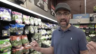 Importancia de los vegetales y las hojas verdes en keto o dieta cetogénica parte 1