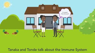 Masas' 1: Tanaka and Tonde talk about the immune system