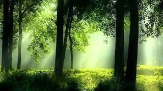 3hr Moonbeam Mix - The Journey - dj mix Part 1 - YouTube.flv