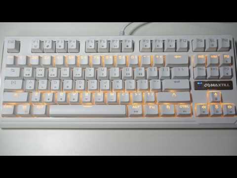 맥스틸 TRON G400K 텐키리스 기계식키보드 (흑축) 11가지 LED 효과