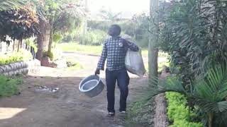 When a Luhya is looking for a rental house