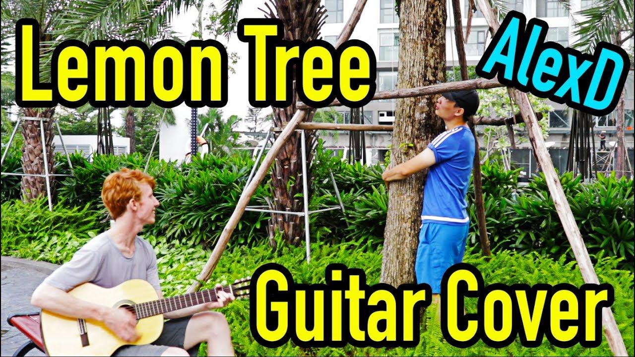 Học tiếng Anh Qua Bài Hát - Lemon Tree - Cover Bởi Cờ Rít Và AlexD