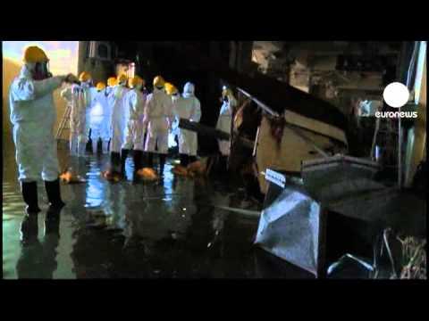 Fukushima: arrêt de l'opération de décontamination de... poster