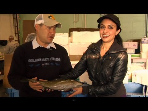 Getting Dirty In The LA Fish Market!