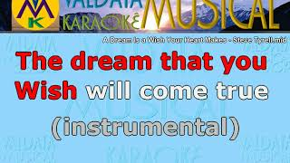 A Dream Is a Wish Your Heart Makes Steve Tyrell Karaoke