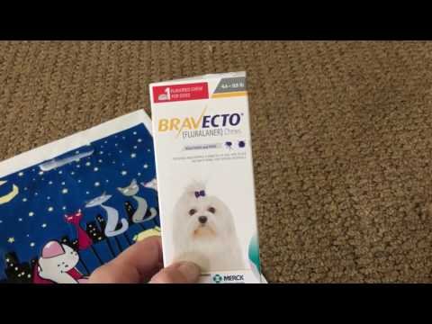 BRAVECTO- Review No More Ticks Or Fleas/On Dogs 🐶