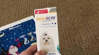 Szivféreg elleni ragotabletta. Nexgard Spectra – ízesített rágótabletta – kutyának