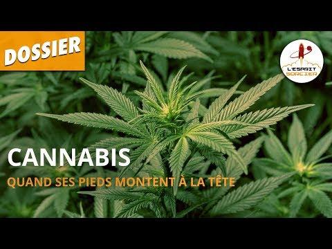 Cannabis : quand ses pieds montent à la tête - Dossier #10 - L'Esprit Sorcier