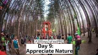 Festival Tip 9: Appreciate Nature