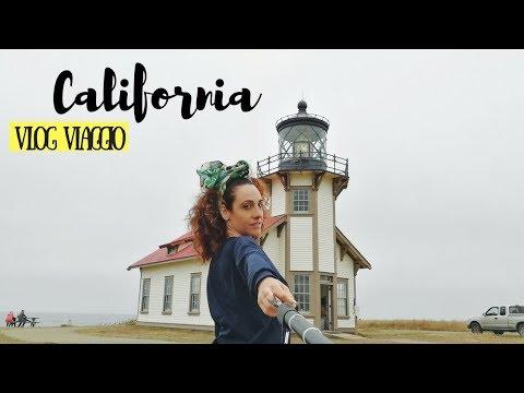 CALIFORNIA ON THE ROAD: Mendocino con cervi, aquile e scoiattoli! \\ VLOG VIAGGIO IN CALIFORNIA