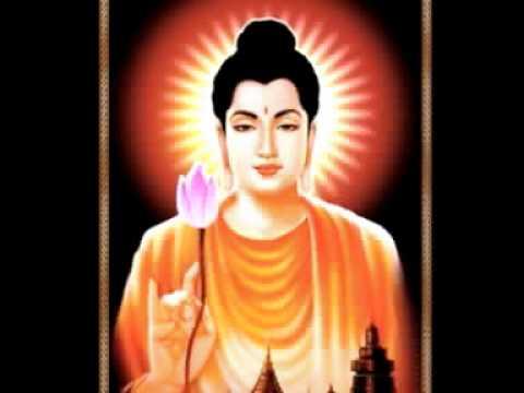 Bài Pháp Ngắn Của Phật - Tk Thich Thong Lai