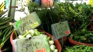 Portland, OR Farmer's Market - 5/27/2009