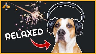 How To Calm Your Dog During Fireworks and Storms (16 Effective Strategies)