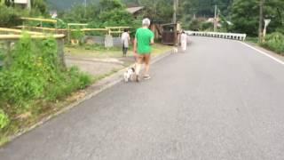 【before動画はこちら】 https://youtu.be/bzH5VQvQ35U https://youtu.b...