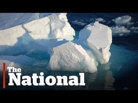 Climate changing in Arctic
