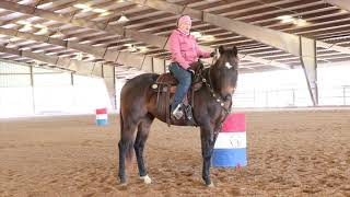 Drills for the 2 year old Barrel Prospect